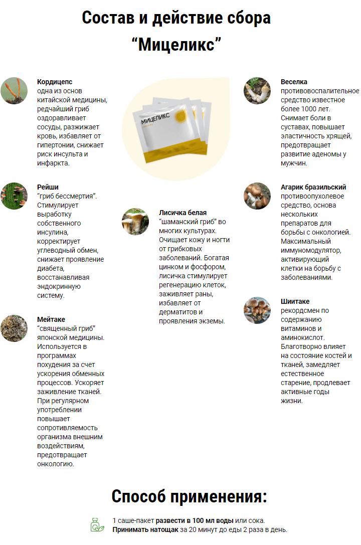 состав грибного сбора Мицеликс